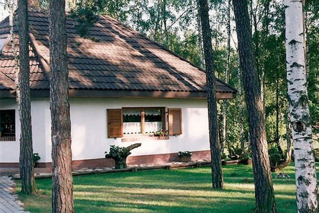 (Polski) aries_3